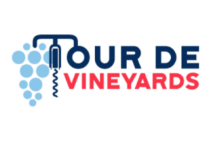 tdv_web_logo2-400x267